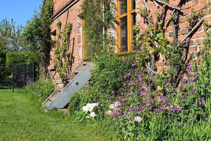 Landschaftsgarten Christianenhof - bepflanzte Ziegelsteinmauer